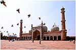 Escort Delhi